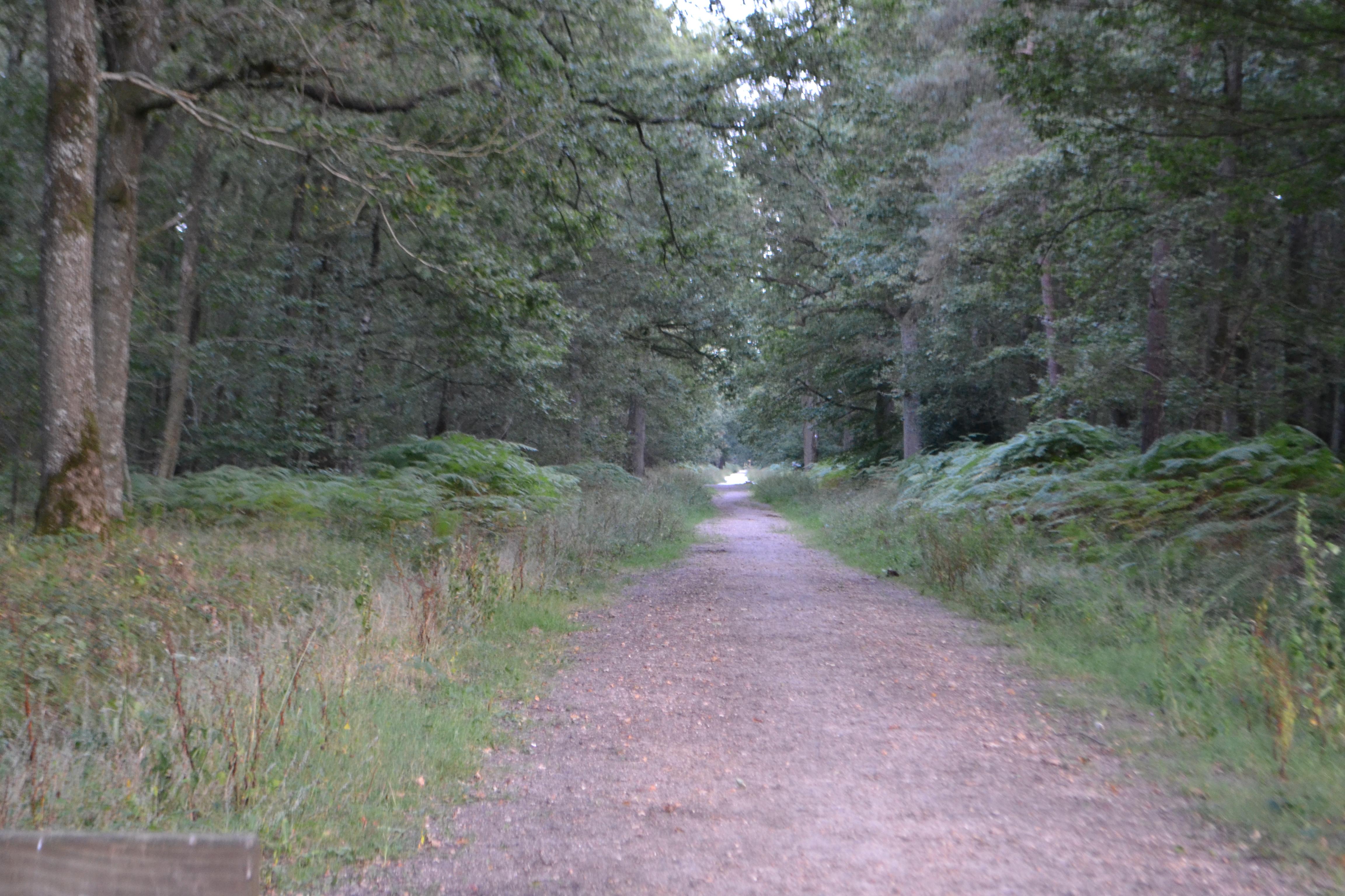 Equi event randonn es et promenades dans les yvelines for Promenade dans les yvelines
